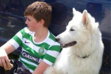 Neru vom Weissen Wächter - Therapie- und Schulhund